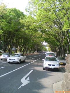 image/ssasachan-2006-05-21T16:51:00-1.jpg